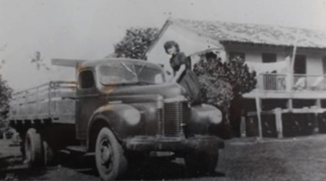 Histórias da fazenda Cascata