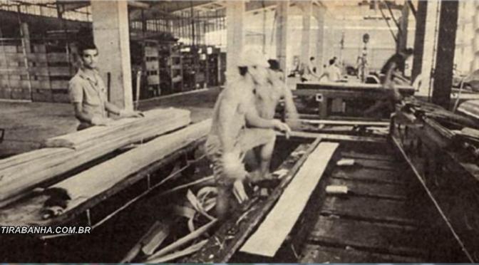 A exploração da madeira em Teixeira de Freitas – Parte  03